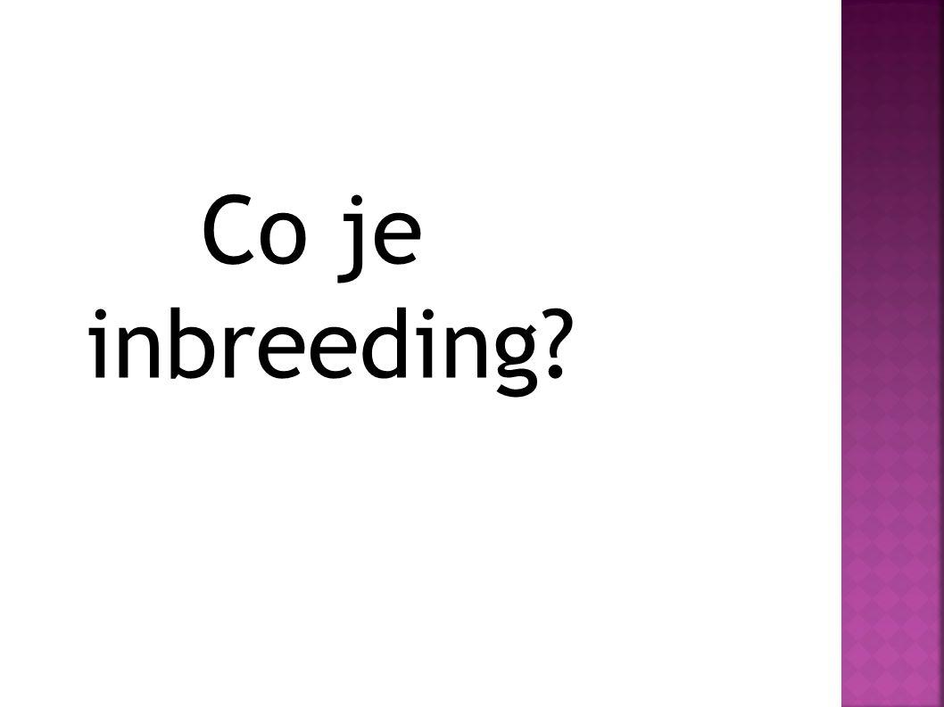 Co je inbreeding?