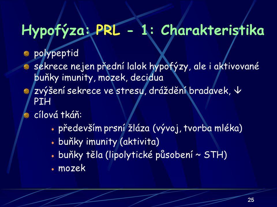 25 Hypofýza: PRL - 1: Charakteristika polypeptid sekrece nejen přední lalok hypofýzy, ale i aktivované buňky imunity, mozek, decidua zvýšení sekrece ve stresu, dráždění bradavek,  PIH cílová tkáň:  především prsní žláza (vývoj, tvorba mléka)  buňky imunity (aktivita)  buňky těla (lipolytické působení ~ STH)  mozek