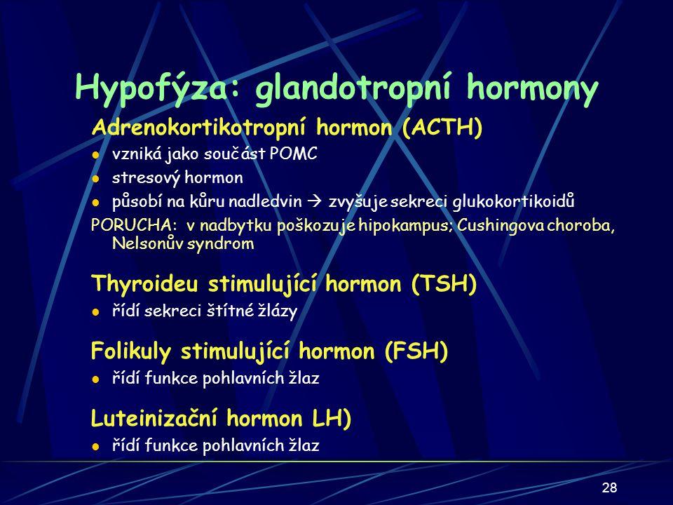 28 Hypofýza: glandotropní hormony Adrenokortikotropní hormon (ACTH) vzniká jako součást POMC stresový hormon působí na kůru nadledvin  zvyšuje sekreci glukokortikoidů PORUCHA: v nadbytku poškozuje hipokampus; Cushingova choroba, Nelsonův syndrom Thyroideu stimulující hormon (TSH) řídí sekreci štítné žlázy Folikuly stimulující hormon (FSH) řídí funkce pohlavních žlaz Luteinizační hormon LH) řídí funkce pohlavních žlaz