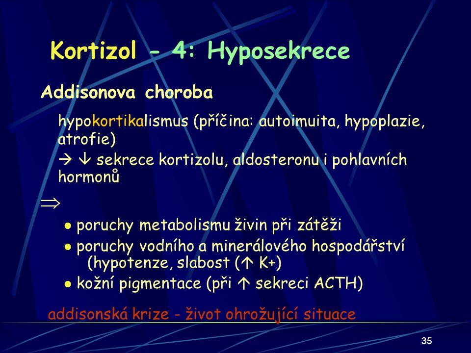 35 Kortizol - 4: Hyposekrece Addisonova choroba hypokortikalismus (příčina: autoimuita, hypoplazie, atrofie)   sekrece kortizolu, aldosteronu i pohlavních hormonů  poruchy metabolismu živin při zátěži poruchy vodního a minerálového hospodářství (hypotenze, slabost (  K+) kožní pigmentace (při  sekreci ACTH) addisonská krize - život ohrožující situace