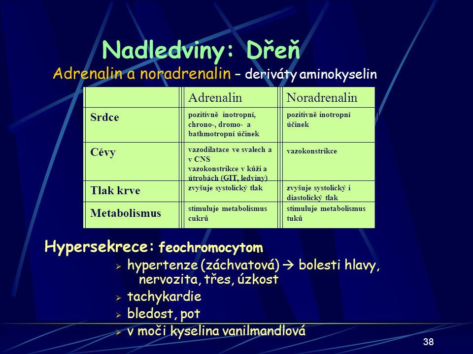 38 Nadledviny: Dřeň Adrenalin a noradrenalin – deriváty aminokyselin Účinek na:AdrenalinNoradrenalin Srdce Posiluje všechny vlastnosti srdečního svalu (inotropii, chronotropii, dromotropii, bathmotropii) Posiluje hlavně inotropii CévyVazodilatace ve svalech a v CNS Vazokonstrikce v kůži a útrobách (GIT, ledviny) Povšechná vazokonstrikce Tlak krveZvyšuje systolický tlakZvyšuje diastolický tlak Metabolismus Stimuluje metabolismus cukrů Stimuluje metabolismus tuků AdrenalinNoradrenalin Srdce pozitivně inotropní, chrono-, dromo- a bathmotropní účinek pozitivně inotropní účinek Cévy vazodilatace ve svalech a v CNS vazokonstrikce v kůži a útrobách (GIT, ledviny) vazokonstrikce Tlak krve zvyšuje systolický tlakzvyšuje systolický i diastolický tlak Metabolismus stimuluje metabolismus cukrů stimuluje metabolismus tuků Hypersekrece: feochromocytom  hypertenze (záchvatová)  bolesti hlavy, nervozita, třes, úzkost  tachykardie  bledost, pot  v moči kyselina vanilmandlová