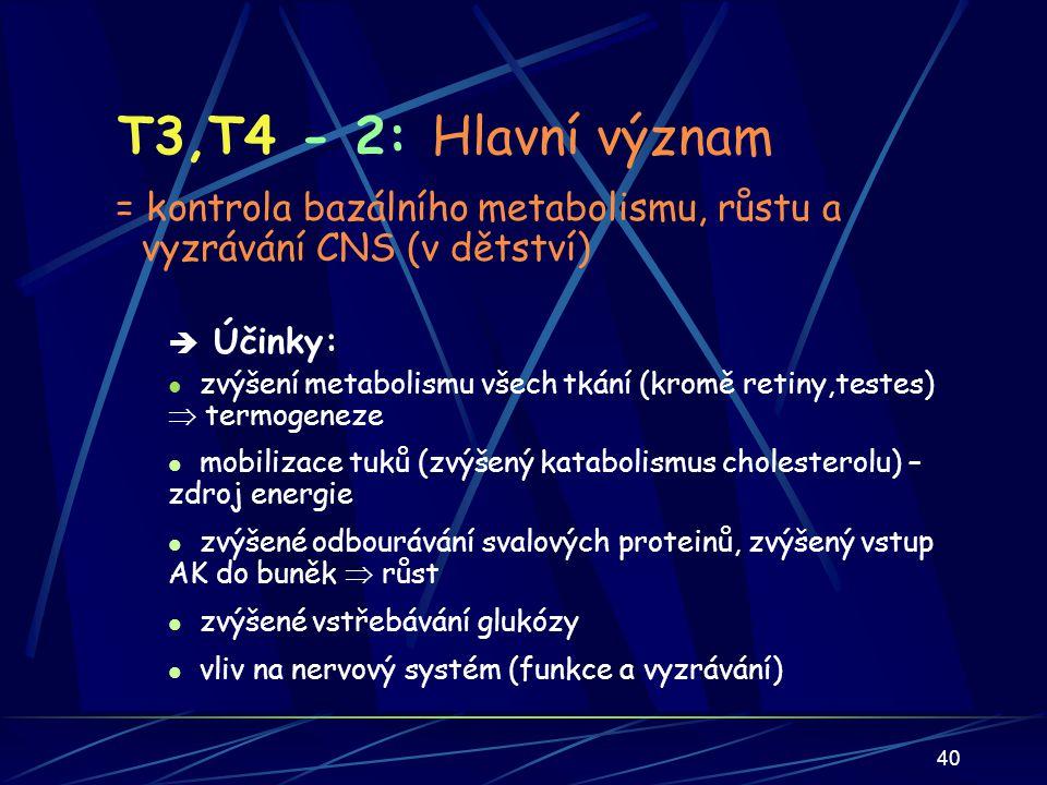 40 T3,T4 - 2: Hlavní význam = kontrola bazálního metabolismu, růstu a vyzrávání CNS (v dětství)  Účinky: zvýšení metabolismu všech tkání (kromě retiny,testes)  termogeneze mobilizace tuků (zvýšený katabolismus cholesterolu) – zdroj energie zvýšené odbourávání svalových proteinů, zvýšený vstup AK do buněk  růst zvýšené vstřebávání glukózy vliv na nervový systém (funkce a vyzrávání)