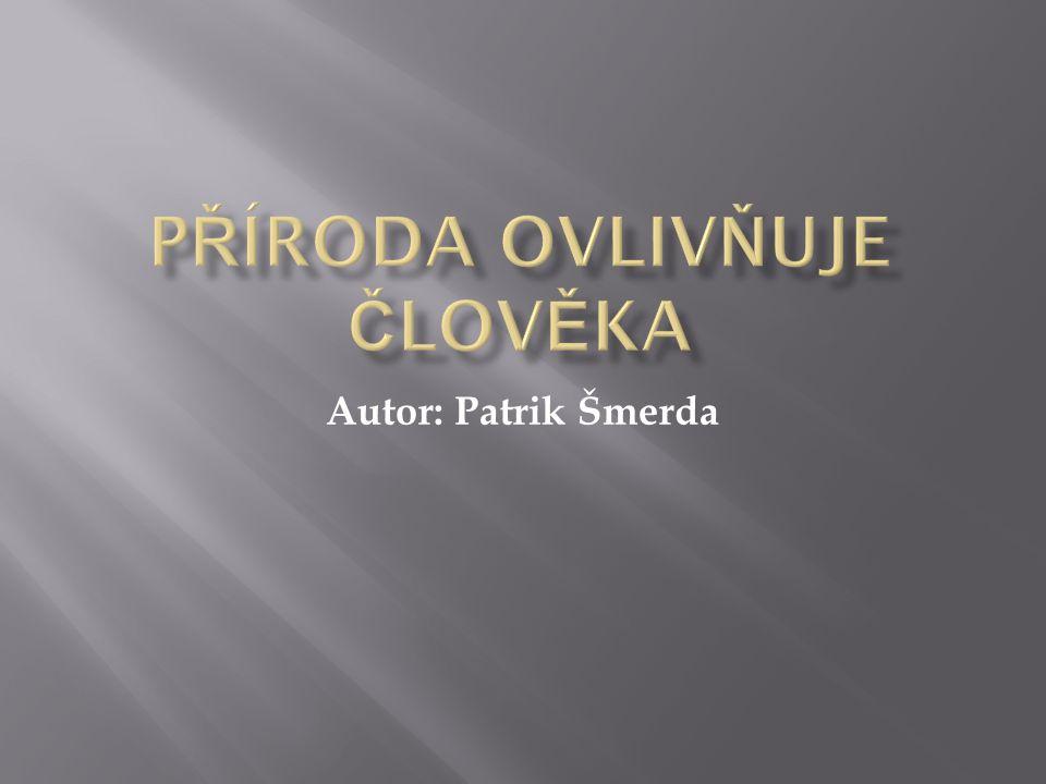 Autor: Patrik Šmerda