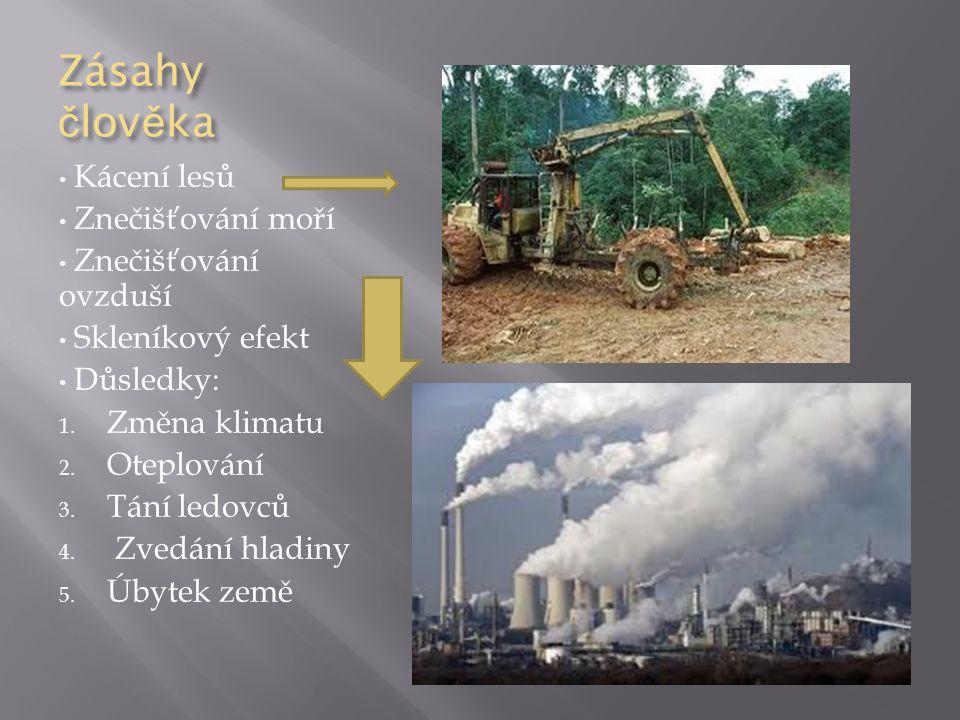 Zásahy č lov ě ka Kácení lesů Znečišťování moří Znečišťování ovzduší Skleníkový efekt Důsledky: 1. Změna klimatu 2. Oteplování 3. Tání ledovců 4. Zved
