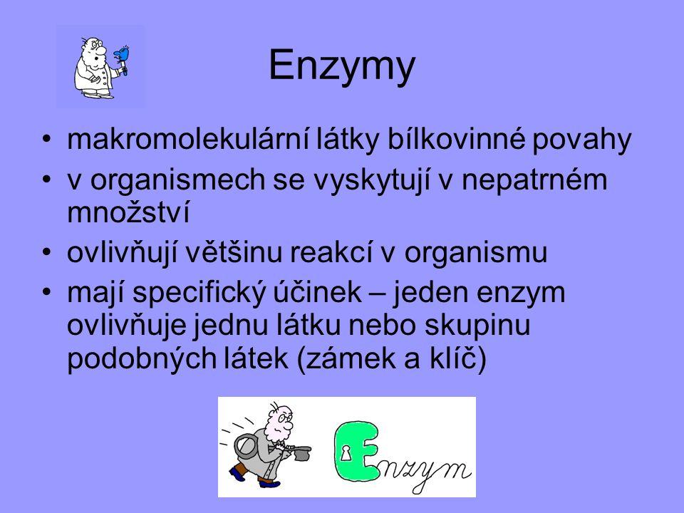 Enzymy makromolekulární látky bílkovinné povahy v organismech se vyskytují v nepatrném množství ovlivňují většinu reakcí v organismu mají specifický ú