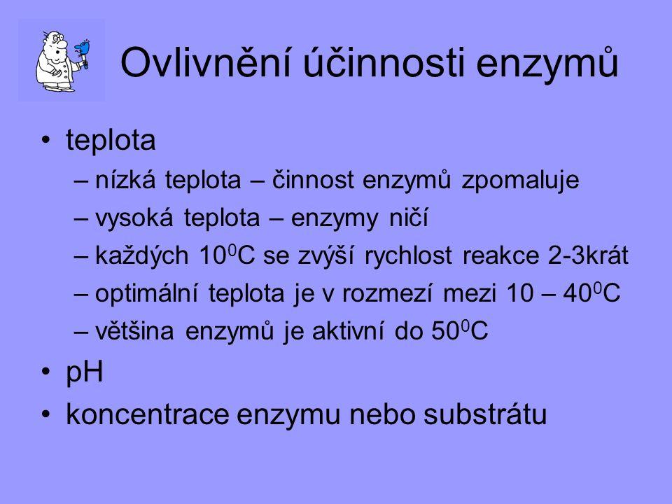 Ovlivnění účinnosti enzymů teplota –n–nízká teplota – činnost enzymů zpomaluje –v–vysoká teplota – enzymy ničí –k–každých 10 0 C se zvýší rychlost rea