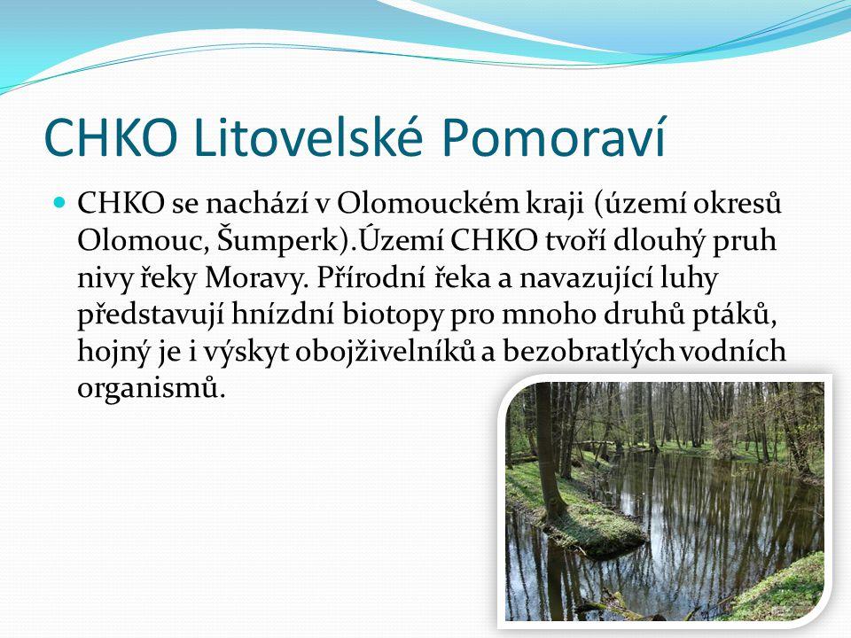 CHKO Litovelské Pomoraví CHKO se nachází v Olomouckém kraji (území okresů Olomouc, Šumperk).Území CHKO tvoří dlouhý pruh nivy řeky Moravy. Přírodní ře