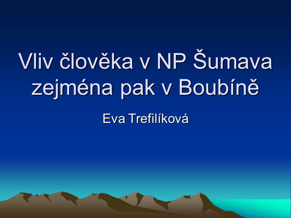 Vliv člověka v NP Šumava zejména pak v Boubíně Eva Trefilíková