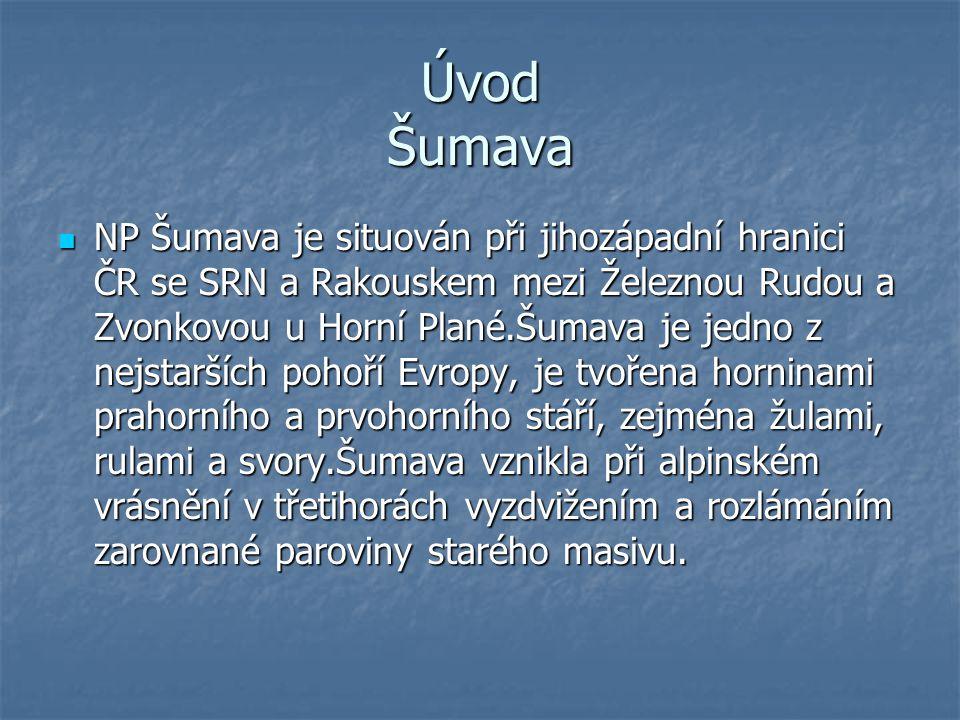 Úvod Šumava NP Šumava je situován při jihozápadní hranici ČR se SRN a Rakouskem mezi Železnou Rudou a Zvonkovou u Horní Plané.Šumava je jedno z nejsta