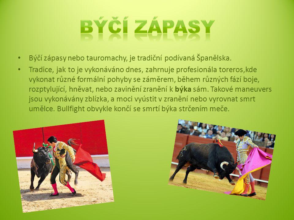 Býčí zápasy nebo tauromachy, je tradiční podívaná Španělska.