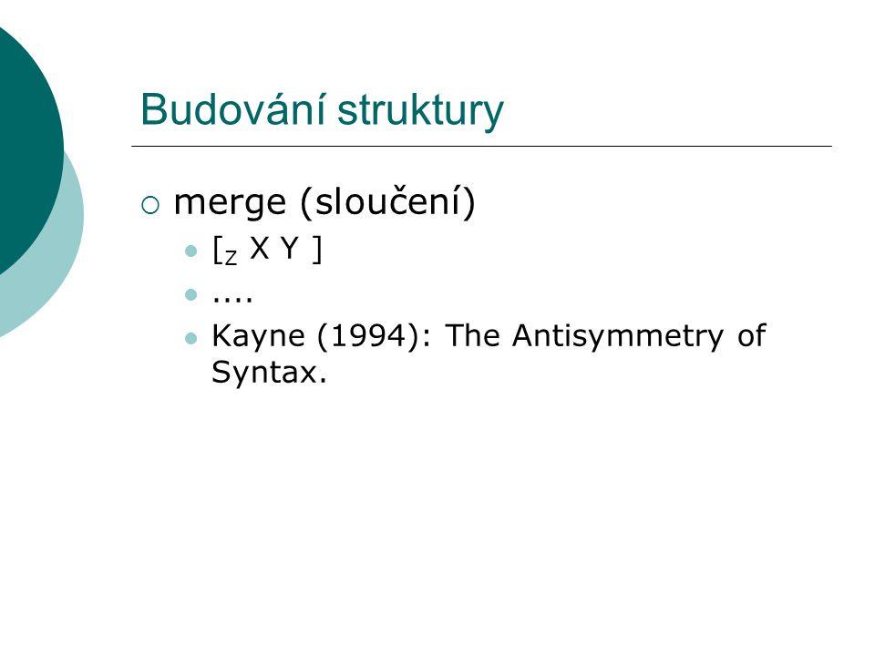 Budování struktury  merge (sloučení) [ Z X Y ].... Kayne (1994): The Antisymmetry of Syntax.