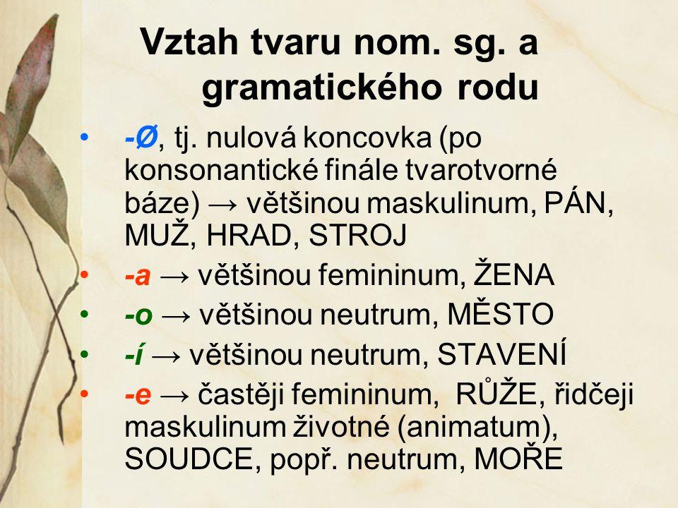 Vztah tvaru nom. sg. a gramatického rodu -Ø, tj. nulová koncovka (po konsonantické finále tvarotvorné báze) → většinou maskulinum, PÁN, MUŽ, HRAD, STR