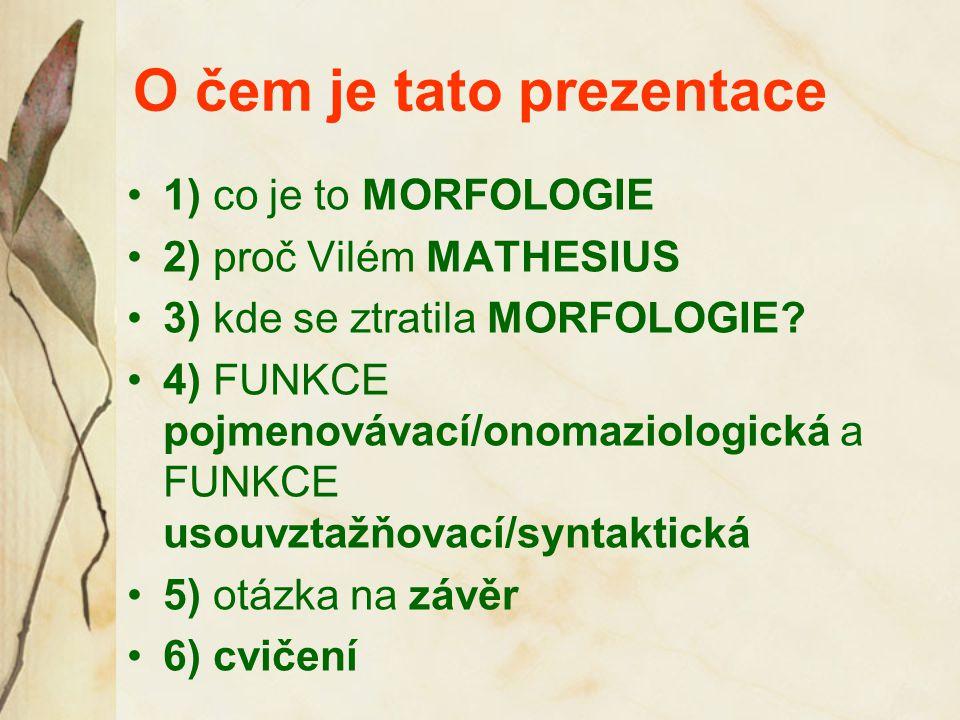 O čem je tato prezentace 1) co je to MORFOLOGIE 2) proč Vilém MATHESIUS 3) kde se ztratila MORFOLOGIE? 4) FUNKCE pojmenovávací/onomaziologická a FUNKC