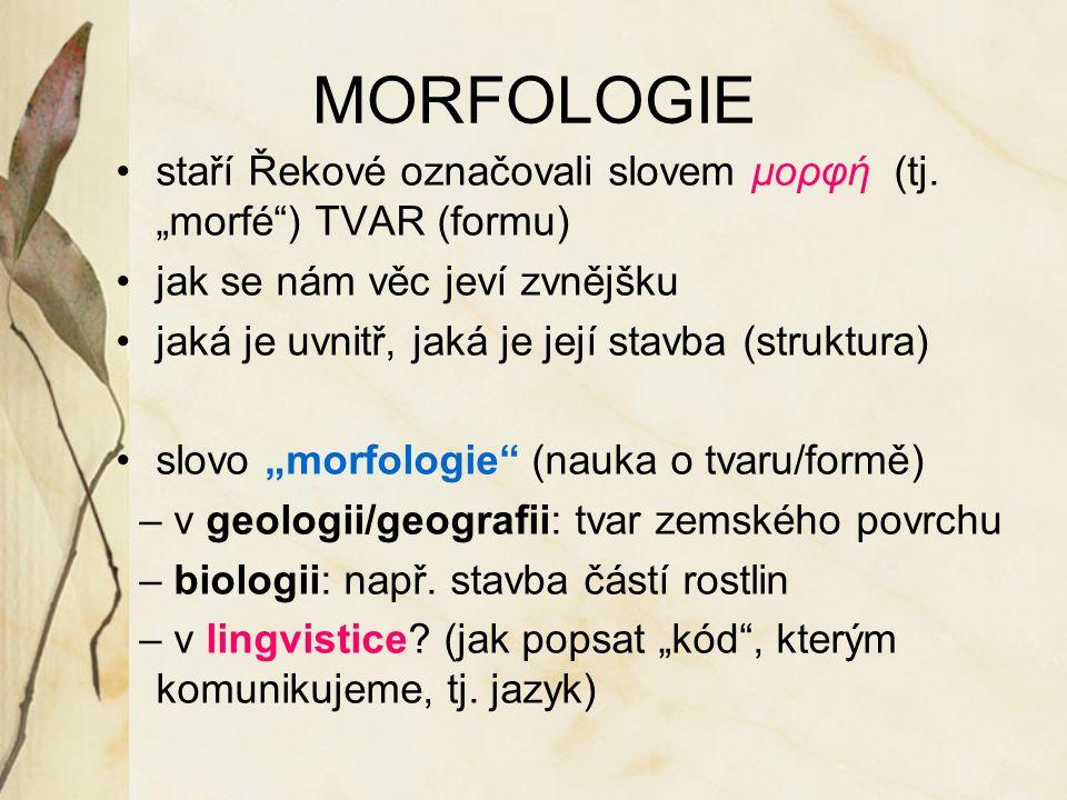 """MORFOLOGIE staří Řekové označovali slovem μορφή (tj. """"morfé"""") TVAR (formu) jak se nám věc jeví zvnějšku jaká je uvnitř, jaká je její stavba (struktura"""