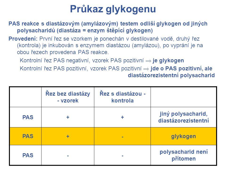 Průkaz glykogenu PAS reakce s diastázovým (amylázovým) testem odliší glykogen od jiných polysacharidů (diastáza = enzym štěpící glykogen) Provedení: První řez se vzorkem je ponechán v destilované vodě, druhý řez (kontrola) je inkubován s enzymem diastázou (amylázou), po vyprání je na obou řezech provedena PAS reakce.