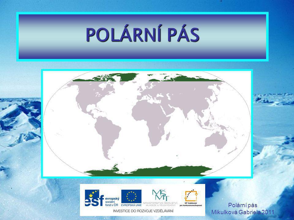 Polární pás Mikulková Gabriela 2011 SEVERNÍ PÓL - Arktida POČASÍ Zimní teploty jsou kolem -40°C Letní teploty se pohybují kolem 0°C