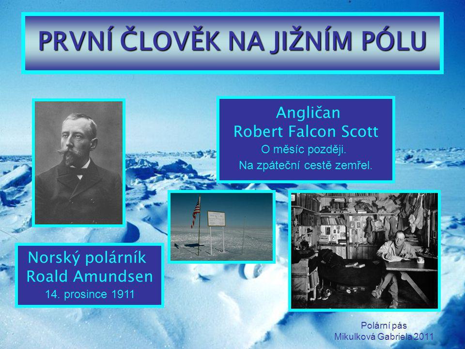 Polární pás Mikulková Gabriela 2011 PRVNÍ ČLOVĚK NA JIŽNÍM PÓLU Norský polárník Roald Amundsen 14. prosince 1911 Angličan Robert Falcon Scott O měsíc
