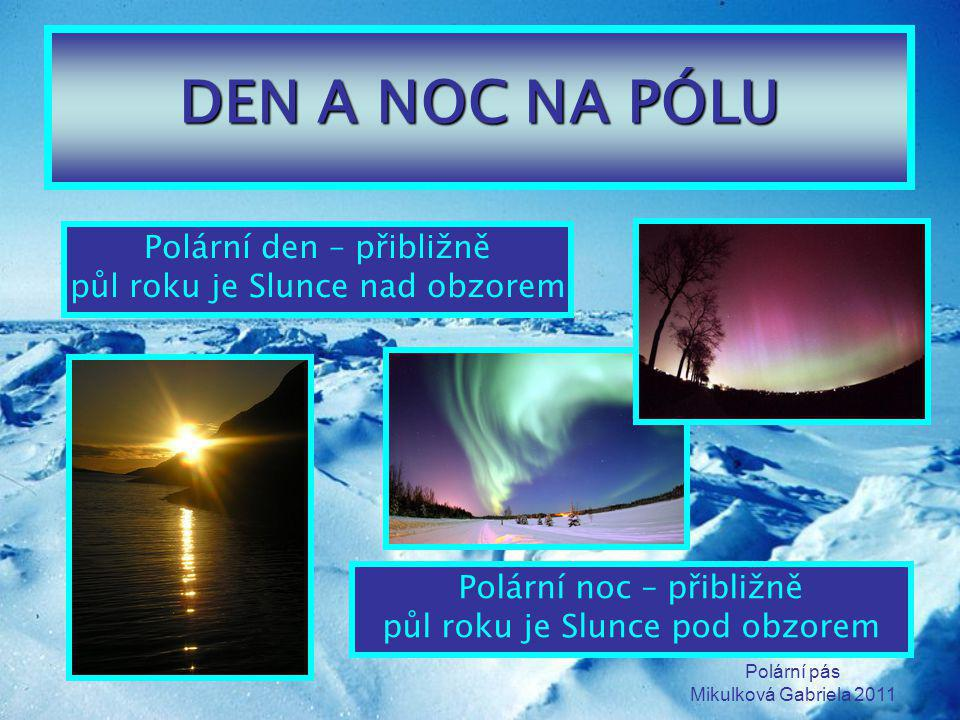Polární pás Mikulková Gabriela 2011 DEN A NOC NA PÓLU Polární den – přibližně půl roku je Slunce nad obzorem Polární noc – přibližně půl roku je Slunc