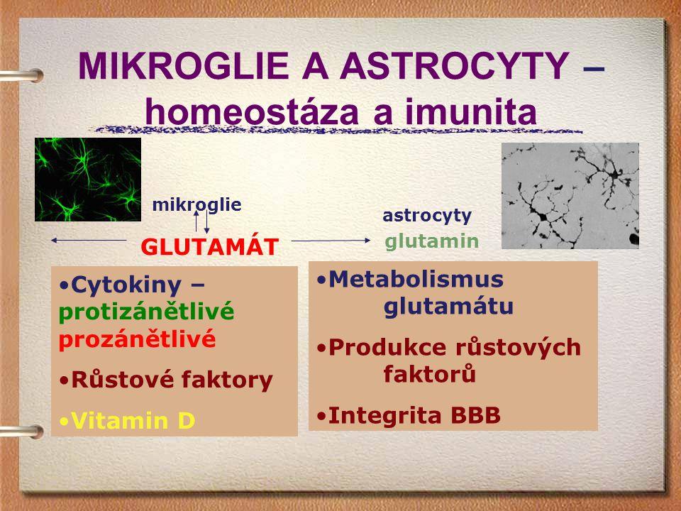 MIKROGLIE A ASTROCYTY – homeostáza a imunita mikroglie GLUTAMÁT glutamin astrocyty Cytokiny – protizánětlivé prozánětlivé Růstové faktory Vitamin D Me