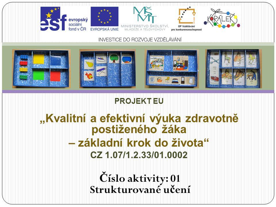"""PROJEKT EU """"Kvalitní a efektivní výuka zdravotně postiženého žáka – základní krok do života"""" CZ 1.07/1.2.33/01.0002 Č íslo aktivity: 01 Strukturované"""