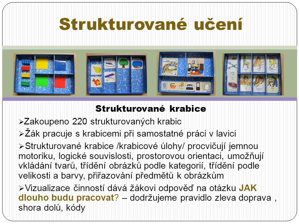 Strukturované krabice  Zakoupeno 220 strukturovaných krabic  Žák pracuje s krabicemi při samostatné práci v lavici  Strukturované krabice /krabicov