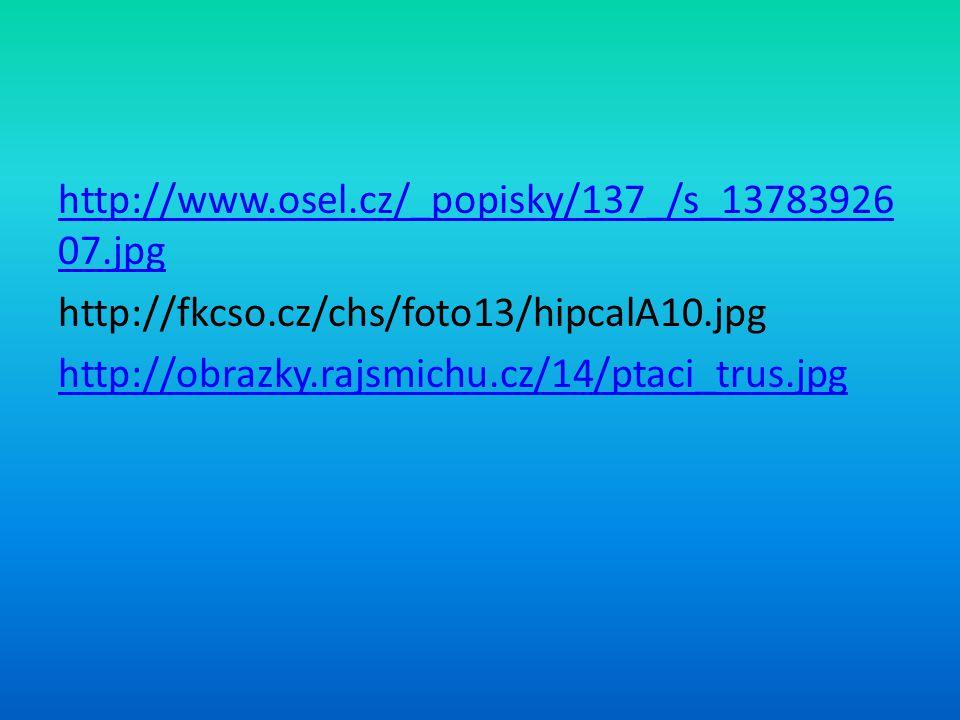 http://www.osel.cz/_popisky/137_/s_13783926 07.jpg http://fkcso.cz/chs/foto13/hipcalA10.jpg http://obrazky.rajsmichu.cz/14/ptaci_trus.jpg
