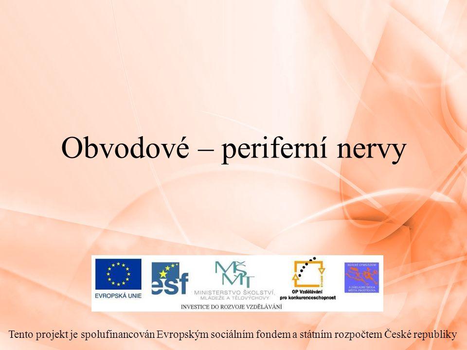 Obvodové – periferní nervy Tento projekt je spolufinancován Evropským sociálním fondem a státním rozpočtem České republiky