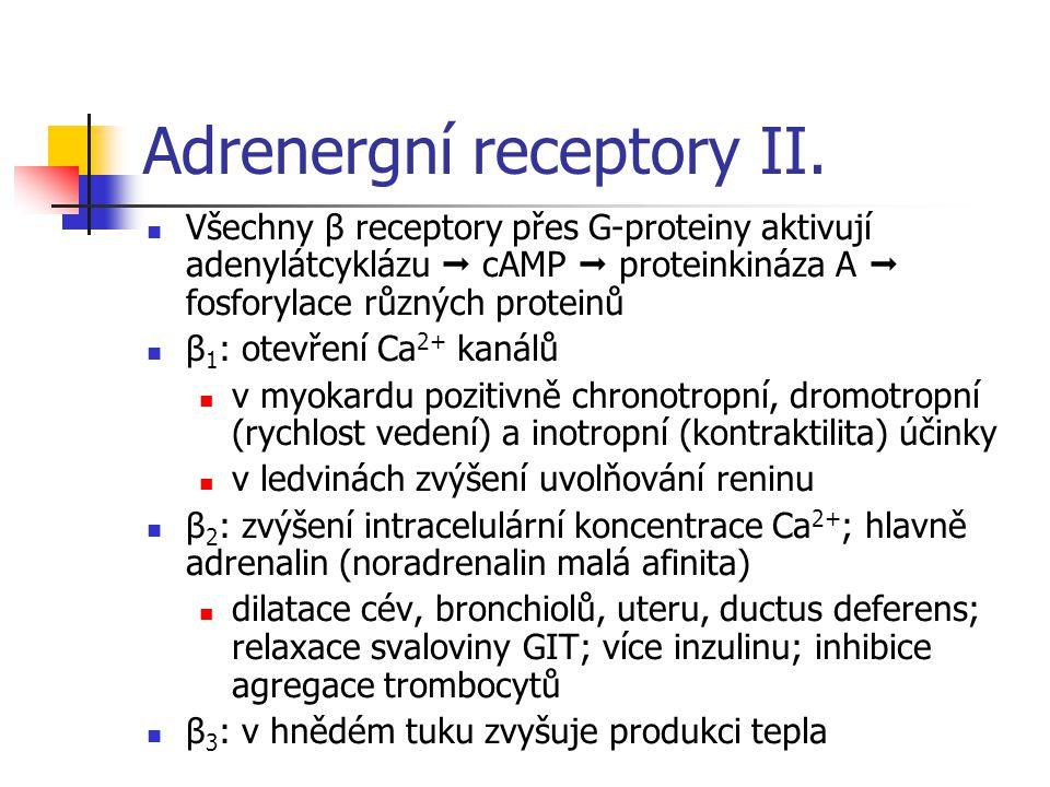 Adrenergní receptory II. Všechny β receptory přes G-proteiny aktivují adenylátcyklázu  cAMP  proteinkináza A  fosforylace různých proteinů β 1 : ot
