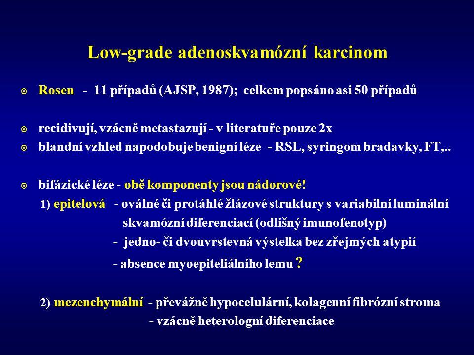 Low-grade adenoskvamózní karcinom  Rosen - 11 případů (AJSP, 1987); celkem popsáno asi 50 případů  recidivují, vzácně metastazují - v literatuře pouze 2x  blandní vzhled napodobuje benigní léze - RSL, syringom bradavky, FT,..