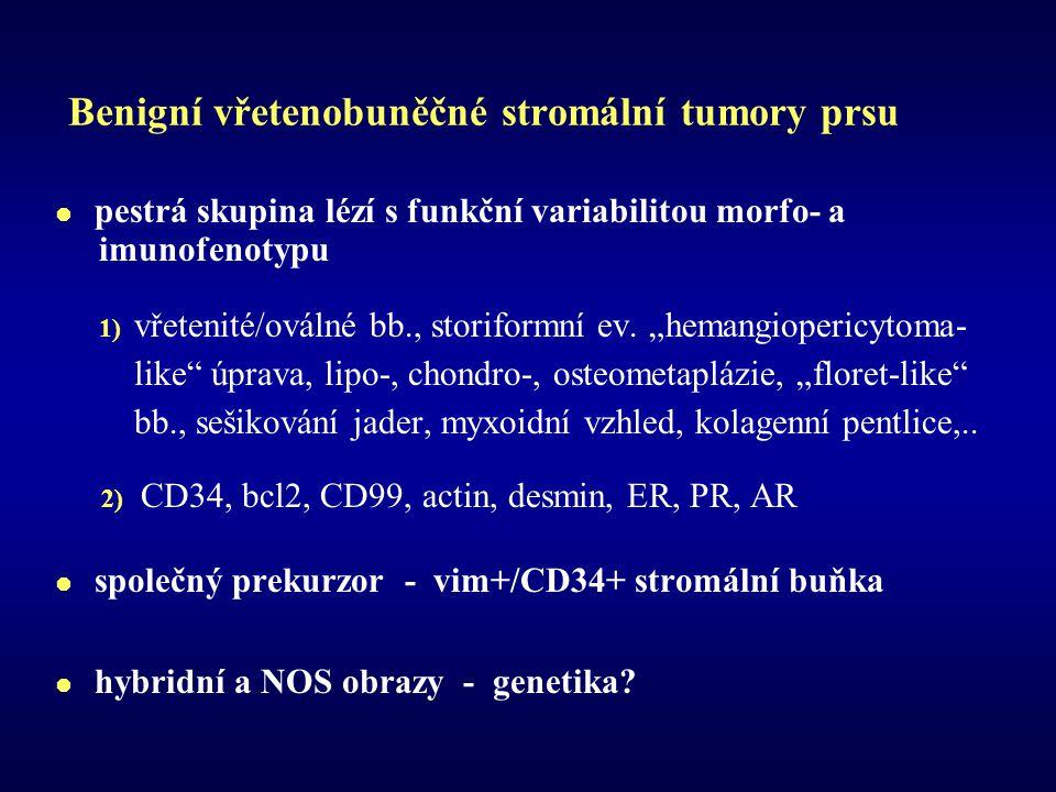 Benigní vřetenobuněčné stromální tumory prsu  pestrá skupina lézí s funkční variabilitou morfo- a imunofenotypu 1) vřetenité/oválné bb., storiformní ev.