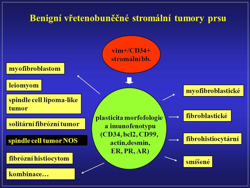plasticita morfofologie a imunofenotypu (CD34, bcl2, CD99, actin,desmin, ER, PR, AR) vim+/CD34+ stromální bb.