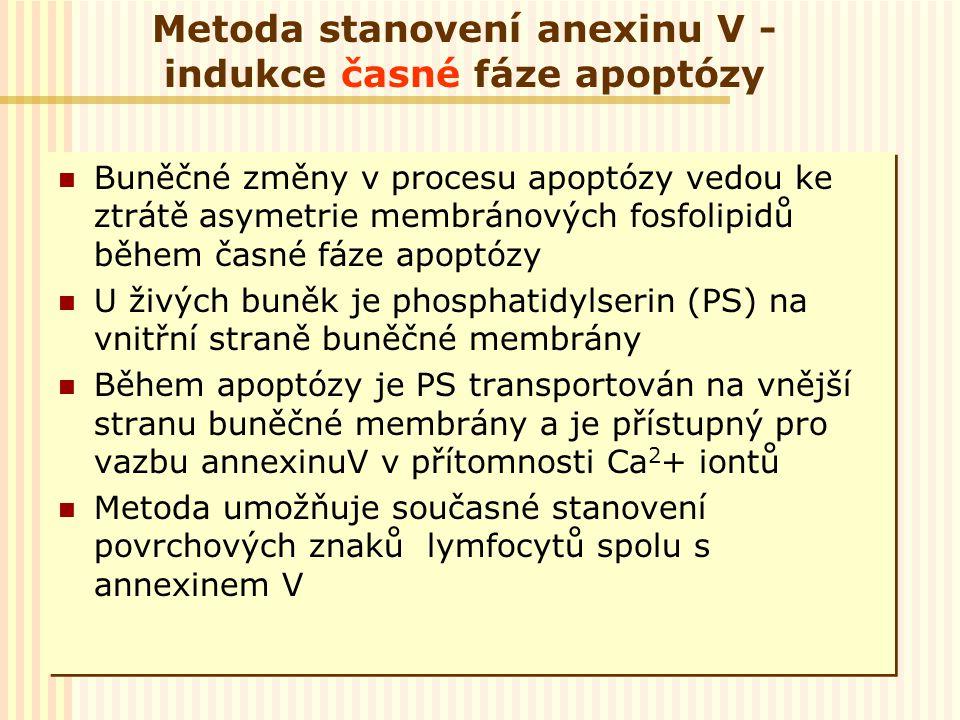 Metoda stanovení anexinu V - indukce časné fáze apoptózy Buněčné změny v procesu apoptózy vedou ke ztrátě asymetrie membránových fosfolipidů během čas