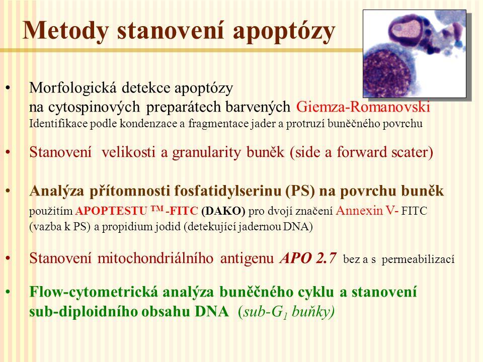 Metody stanovení apoptózy Morfologická detekce apoptózy na cytospinových preparátech barvených Giemza-Romanovski Identifikace podle kondenzace a fragm