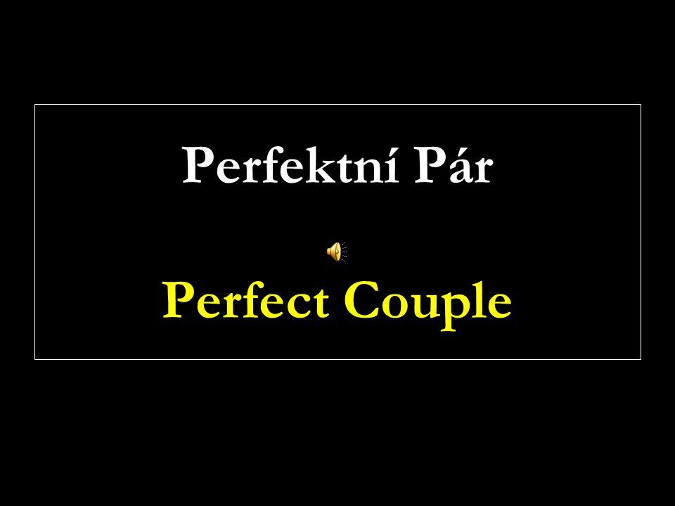 Perfektní Pár Perfect Couple