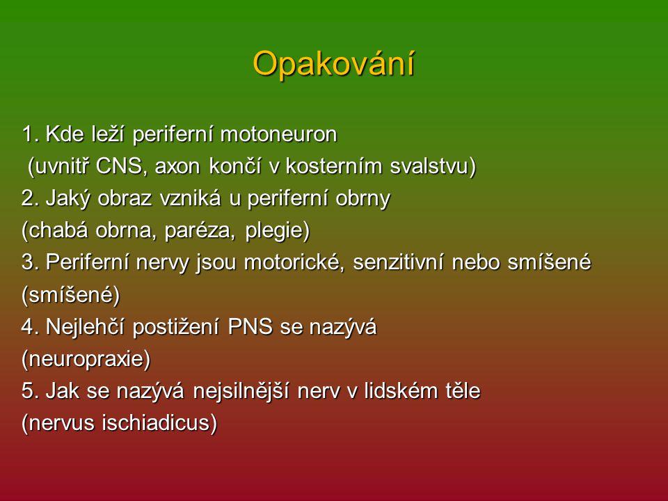 Opakování 1. Kde leží periferní motoneuron (uvnitř CNS, axon končí v kosterním svalstvu) (uvnitř CNS, axon končí v kosterním svalstvu) 2. Jaký obraz v