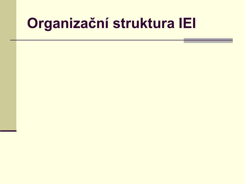 Organizační struktura IEI