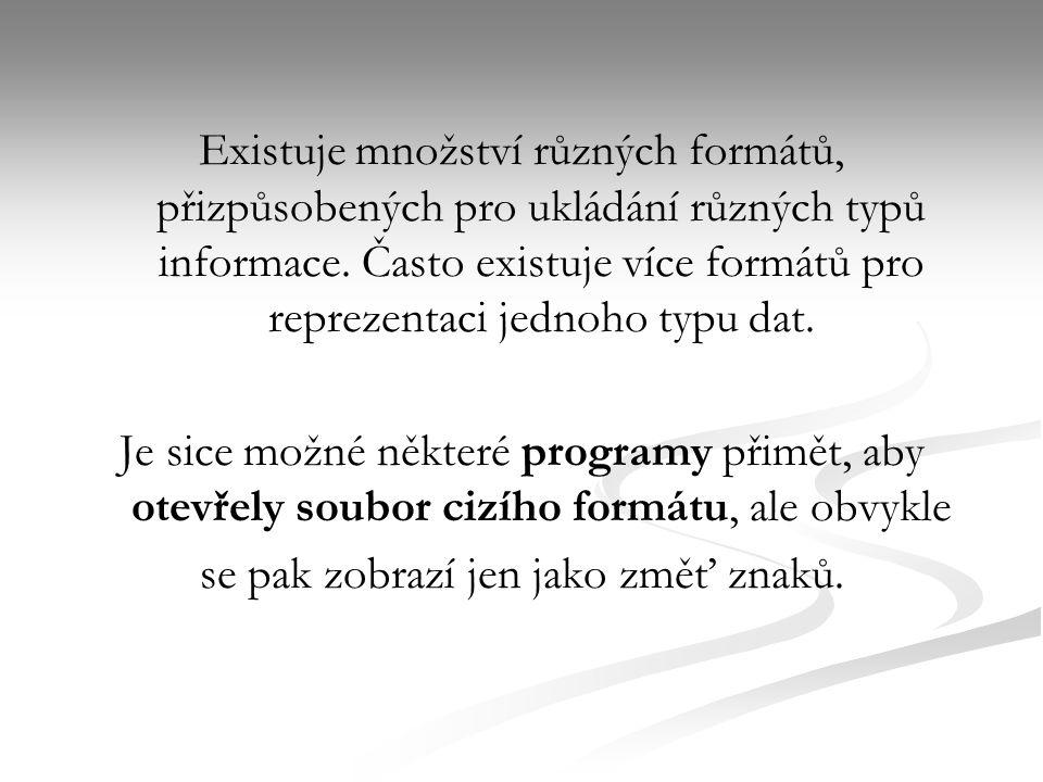 Existuje množství různých formátů, přizpůsobených pro ukládání různých typů informace.