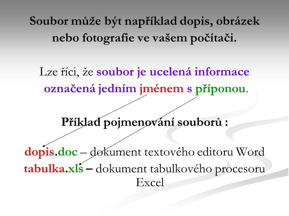 Soubor může být například dopis, obrázek nebo fotografie ve vašem počítači.