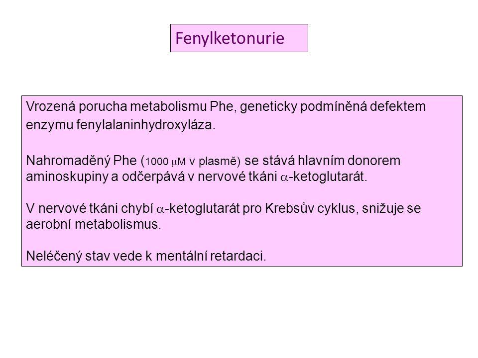 Fenylketonurie Vrozená porucha metabolismu Phe, geneticky podmíněná defektem enzymu fenylalaninhydroxyláza. Nahromaděný Phe ( 1000  M v plasmě) se st