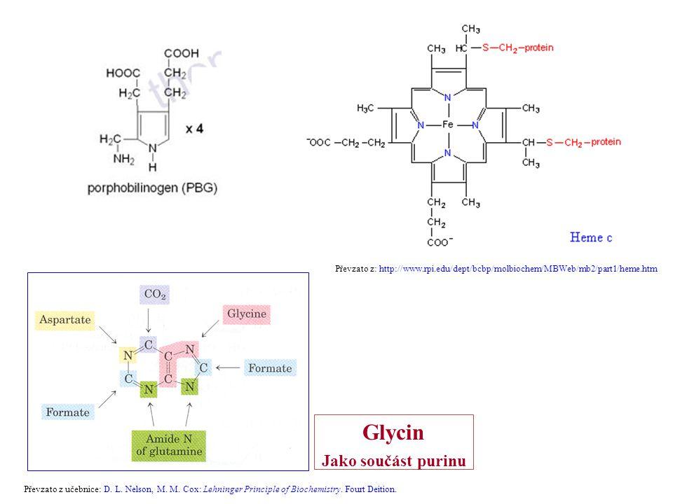 Převzato z učebnice: D. L. Nelson, M. M. Cox: Lehninger Principle of Biochemistry. Fourt Deition. Glycin Jako součást purinu