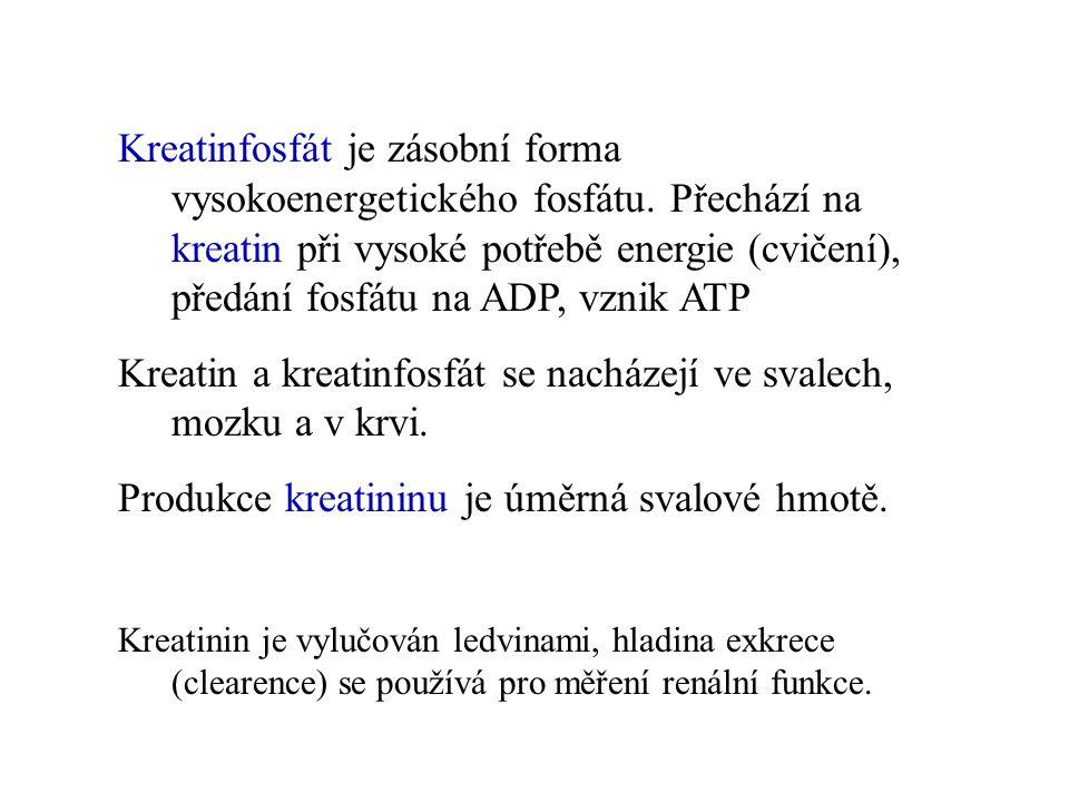 Kreatinfosfát je zásobní forma vysokoenergetického fosfátu. Přechází na kreatin při vysoké potřebě energie (cvičení), předání fosfátu na ADP, vznik AT