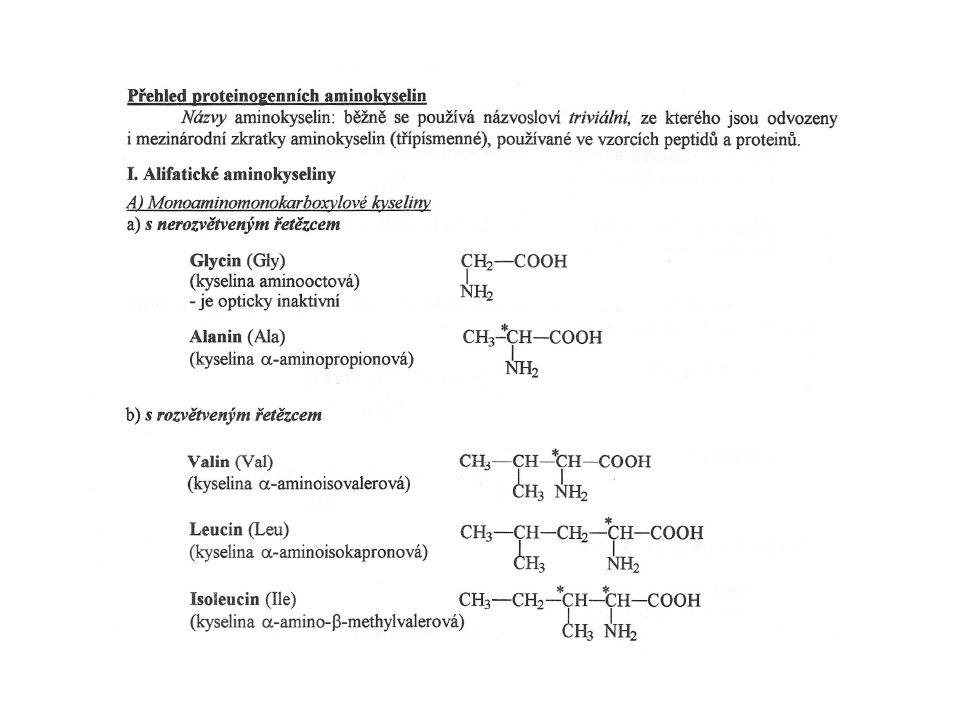 Přeměna aminokyselin na specialisované produkty Glycin hem, purin, konjugace na žlučové kyseliny, kreatin Histidin histamin Ornithin a arginin kreatin, polyaminy (spermidin, spermin) Tryptofan serotonin (melatonin) Tyrosin andrenalin a noradrenalin Kyselina glutamová g-aminomáselná kyselina (GABA) Biologicky aktivní aminokyseliny Neurotransmitery – glycin a kyselina glutamová