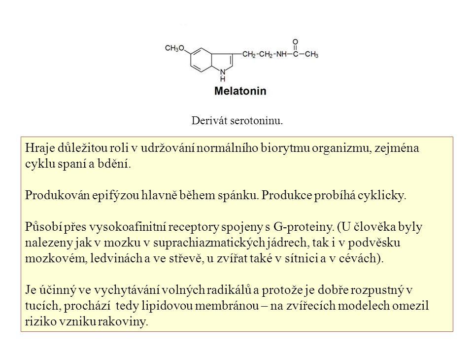 Derivát serotoninu. Hraje důležitou roli v udržování normálního biorytmu organizmu, zejména cyklu spaní a bdění. Produkován epifýzou hlavně během spán