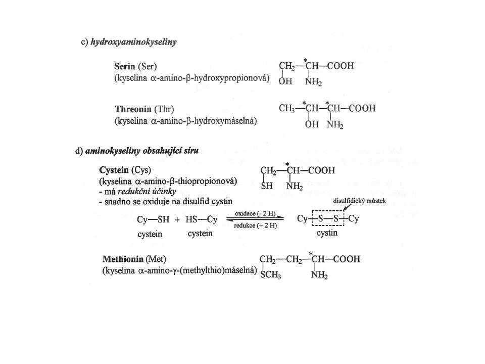 Tvorba aktivovaného methioninu = S-adenosylmethionin (SAM) Metabolismus methioninu SAM slouží jako prekurzor pro řadu methylačních reakcí, např.