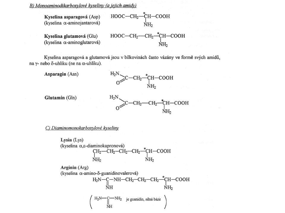  -aminomáselná kyselina (GABA) Inhibiční neurotransmiter.