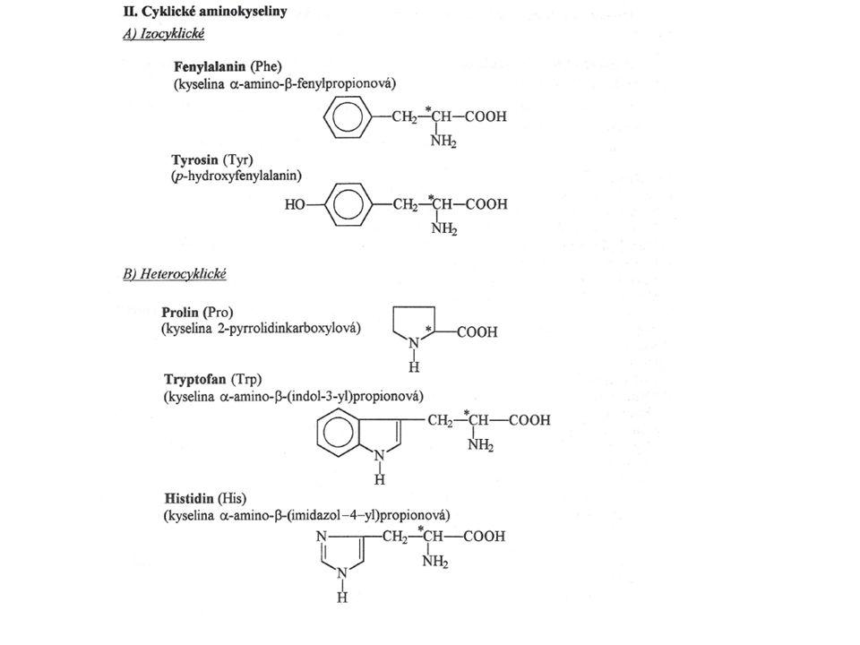Dráha syntézy serotoninu a melatoninu z tryprofanu Serotonin : Je ve vysoké koncentraci obsažen v destičkách, gastrointestinálním traktu, neuronech v mozku.