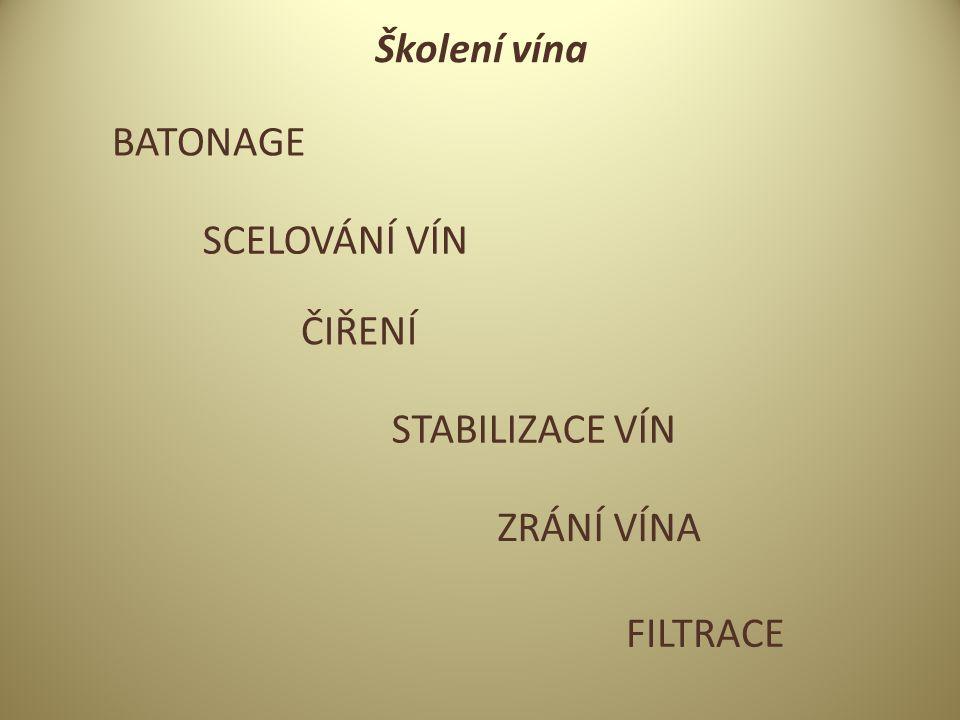 Školení vína BATONAGE SCELOVÁNÍ VÍN ČIŘENÍ FILTRACE STABILIZACE VÍN ZRÁNÍ VÍNA
