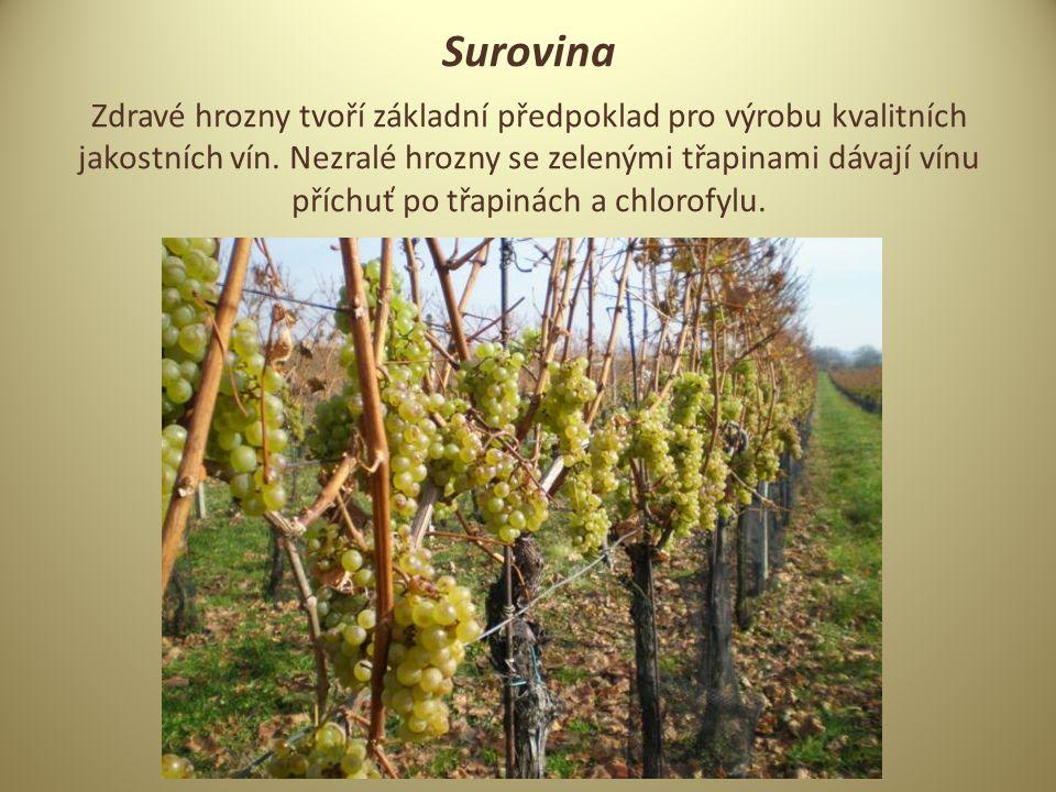 Surovina Zdravé hrozny tvoří základní předpoklad pro výrobu kvalitních jakostních vín.