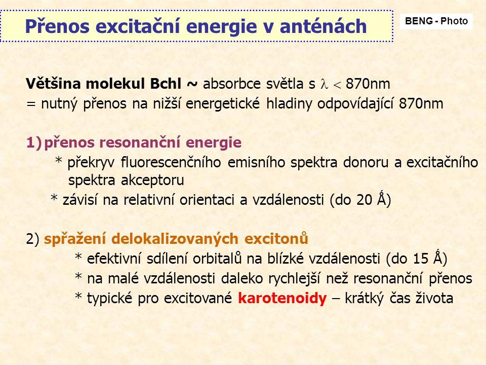 Přenos excitační energie v anténách BENG - Photo Většina molekul Bchl ~ absorbce světla s  870nm = nutný přenos na nižší energetické hladiny odpovídající 870nm 1)přenos resonanční energie * překryv fluorescenčního emisního spektra donoru a excitačního spektra akceptoru * závisí na relativní orientaci a vzdálenosti (do 20 Ǻ) 2) spřažení delokalizovaných excitonů * efektivní sdílení orbitalů na blízké vzdálenosti (do 15 Ǻ) * na malé vzdálenosti daleko rychlejší než resonanční přenos * typické pro excitované karotenoidy – krátký čas života