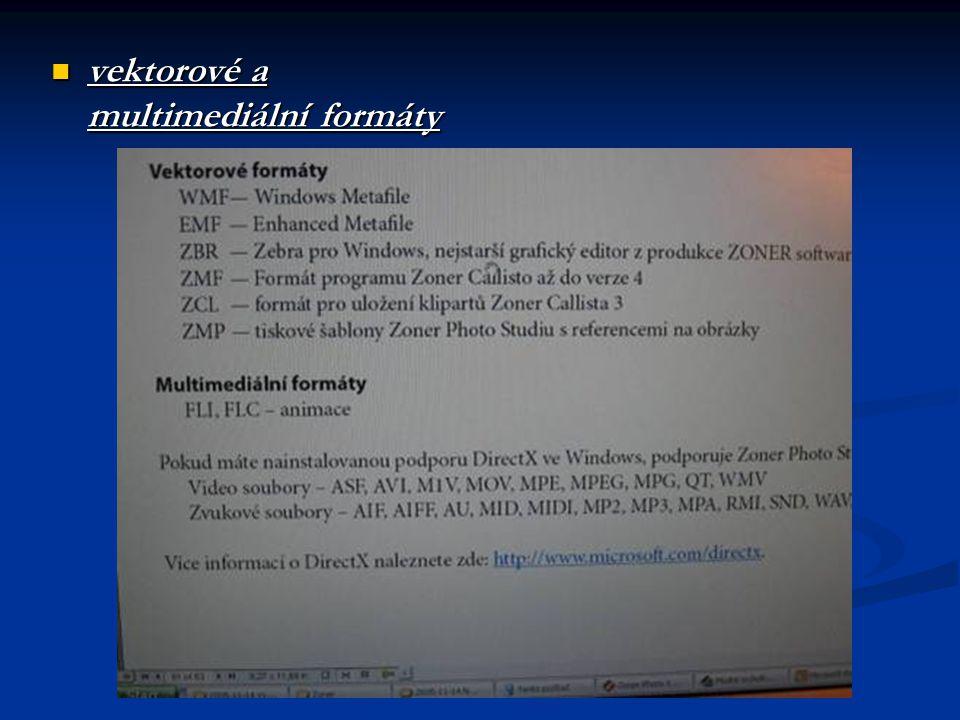 vektorové a multimediální formáty vektorové a multimediální formáty